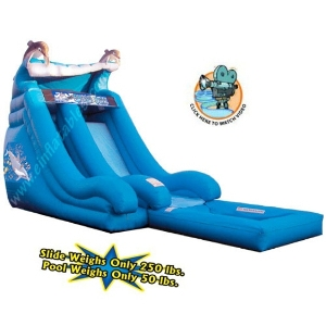 Spacewalk Dolphin Inflatable Slide